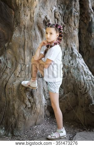 Pretty Lovely Young Girl With Pigtails Wearing White Shirt Leaning On The Stem Of The Old Tree In Th