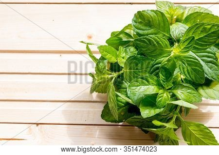 Bundle Of Fresh Spear Mint Isolated On Wooden Background.green Mint Leaves Bunch.peppermint In Bowl,
