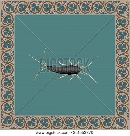 Silverfish Color Illustration In Medieval Floral Frame. Vector.