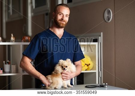 Treatment Dogs In Veterinary Clinic. Young Man Vet Cares For Pet.