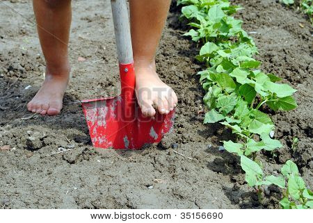 kif feet over a shovel in the garden