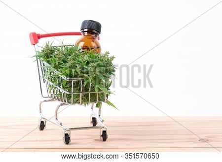 Cannabis With Cannabidiol Extract On White Background