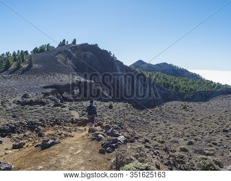 Man Hiker At Volcanic Landscape With Lush Green Pine Trees, Colorful Volcanoes And Lava Rock Field O