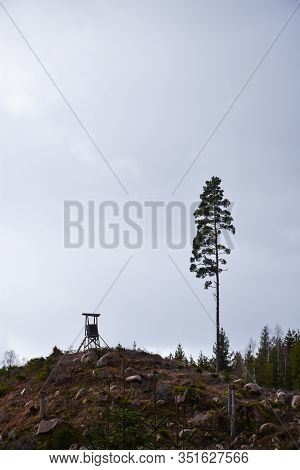 Hunting Tower On A Hill By A Lone Tall Pine Tree