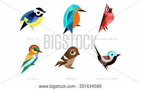 Colorful Stylized Birds Collection, Great Tit, Kingfisher, Northern Cardinal, Bee Eater, Sparrow, Su