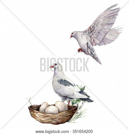 Watercolor Composition Of Birds With Dove And Nest. Hand-painted Spring Nest With Pigeon, Eggs And B