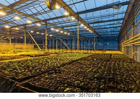 Modern Hydroponic Greenhouse With Complex Climate Control System. Working Artificial Light In Evenin