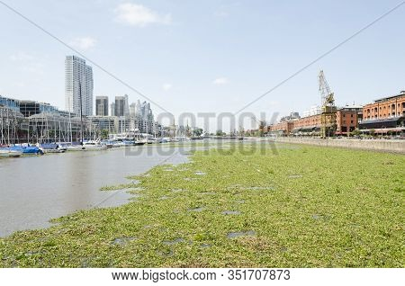 Capital Federal, Buenos Aires/ Argentina; Jan 23, 2016: Unusual View Of Puerto Madero: Water Surface