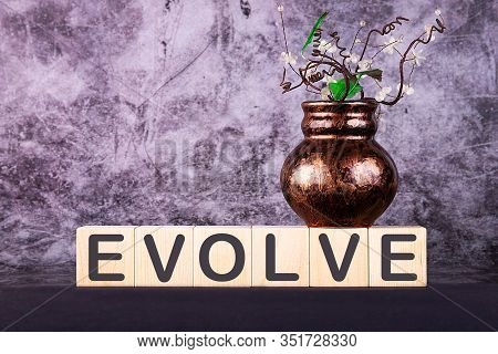 Evolve Word Made With Building Blocks On A Grey Background