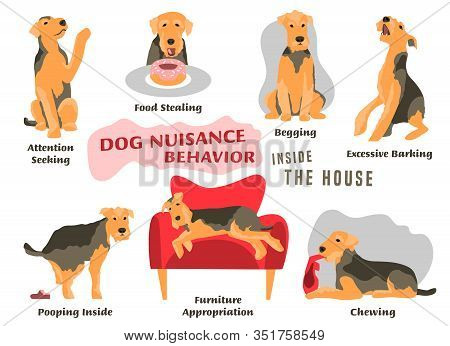 Dog Behavior Problem Icon Set. Domestic Animal Or Pet Language. Airedale Terrier Training. Puppy In