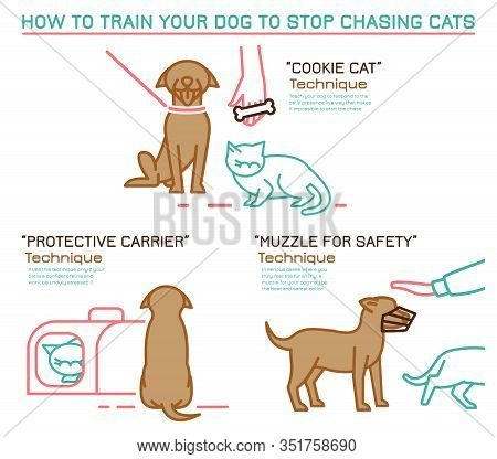 Cats And Dogs Training Technique. Dog Chasing Behavior Icon. Professional Trainer. Domestic Animal,