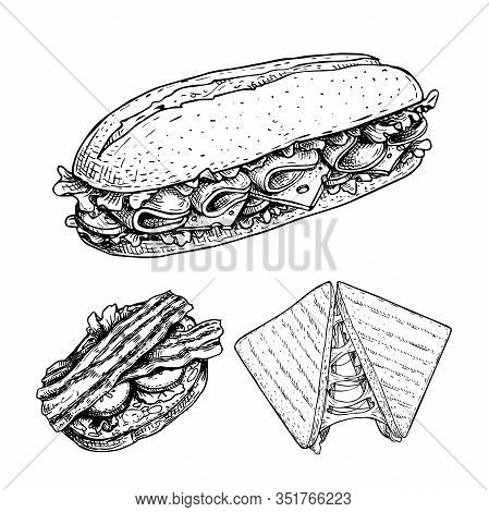 Hand Drawn Sketch Sandwiches Set.  Submarine, Ciabatta, Triangle  Sandwiches With Lettuce Leaves, Ch
