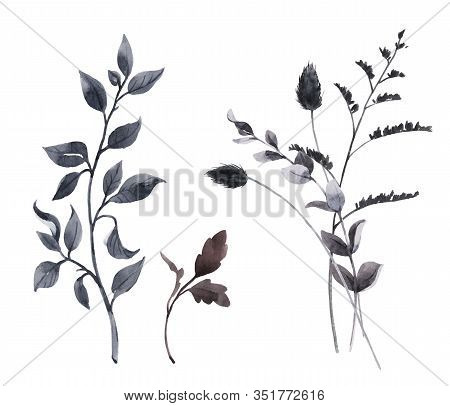 Beautiful Bouquet Composition With Watercolor Dark Wild Field Herbs. Stock Illustration.