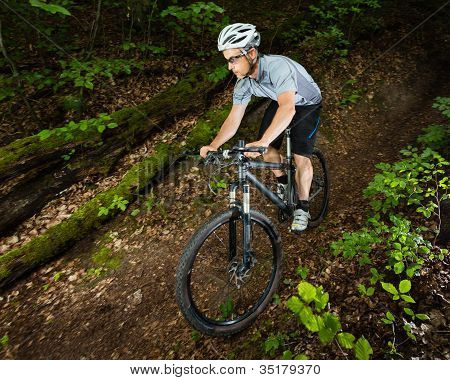Mountainbiker in a downhill