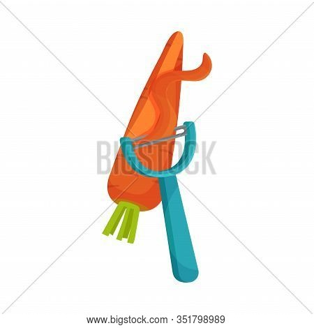 Process Of Peeling Carrot With Paring Knife Vector Illustration