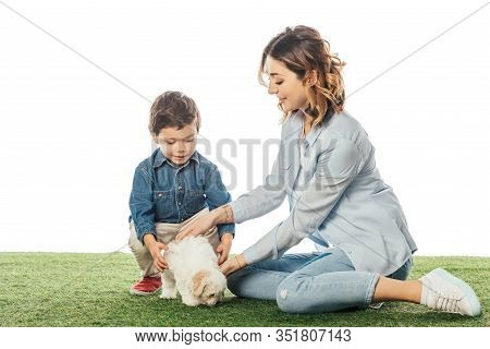 Smiling Mother And Son Stroking Havanese Puppy Isolated On White
