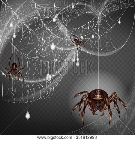 Nest Of Dangerous And Scarifying Spiders 3d Realistic With Poisonous Big And Small Arthropods Hangin