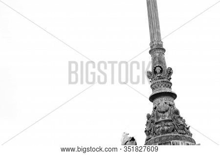 Pointing Skyward. Ancient Architecture And Design. Gull Sit On Architectural Monument. Historical St