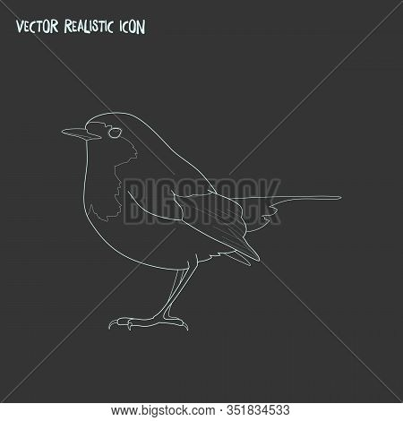 Robin Bird Icon Line Element. Vector Illustration Of Robin Bird Icon Line Isolated On Clean Backgrou