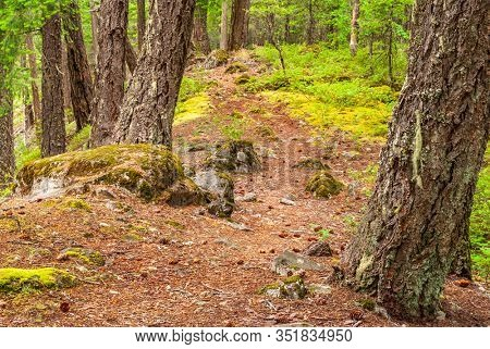 Mountain Trail in British Columbia, Canada. Mountains Background.