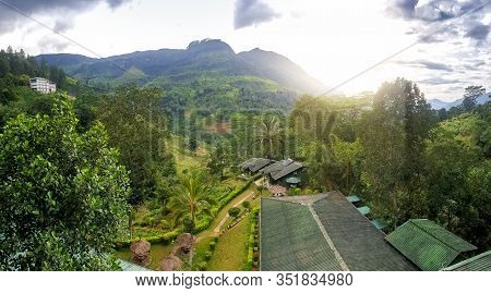 Panoramic Photo Of Small Village And Tea Plantation In The Mountains At Sunset