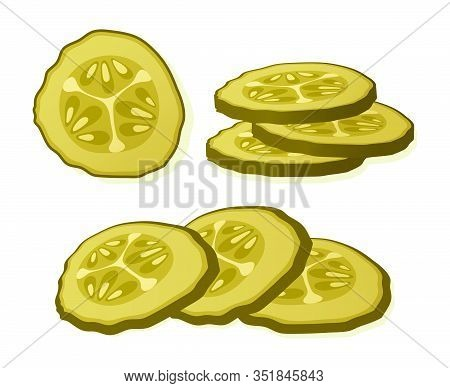 Pickled Cucumber Slice Isolated On White Background. Marinated Pickled Cucumber Isolated. Vector Ill