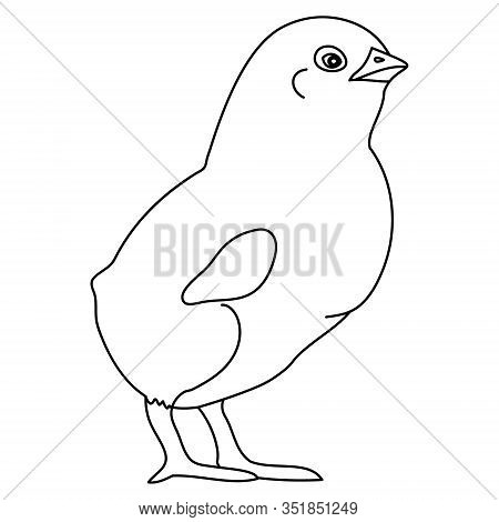 Vector Illustration Of A Proud Chicken Preparing For Easter. Outline On An Isolated Background. Colo