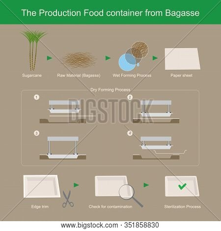 The Production Food Container From Bagasse Paper, It's Make Decomposed Easily And Reduce Garbage Pro
