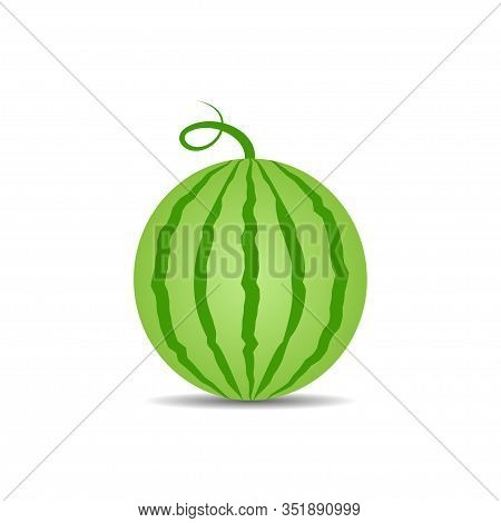 Watermelon Vector Icon Isolated On White Background