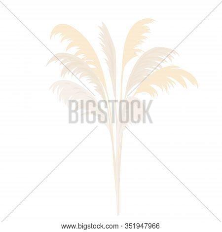 Silver Pampas Grass Sheaf. Card Template. Copy Space. Vector Illustration. Floral Golden Ornamental