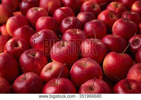 Full frame shot of red apples. Fresh red apples from the market.