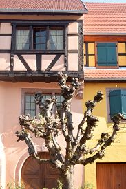 A Glimpse Of The Typical Architecture Of Alsace - France