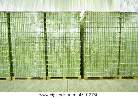 MOSCOW - MAY 16: Many packed cans of mojitos in Ochakovo factory, on May 16, 2012 in Moscow, Russia. Ochakovo has breweries in several Russian cities - Moscow, Krasnodar, Tyumen, Penza.