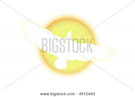 Eagle silhouette over glowing sun on white background poster