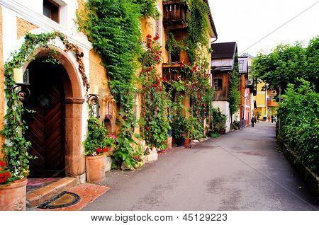 Flower lined street