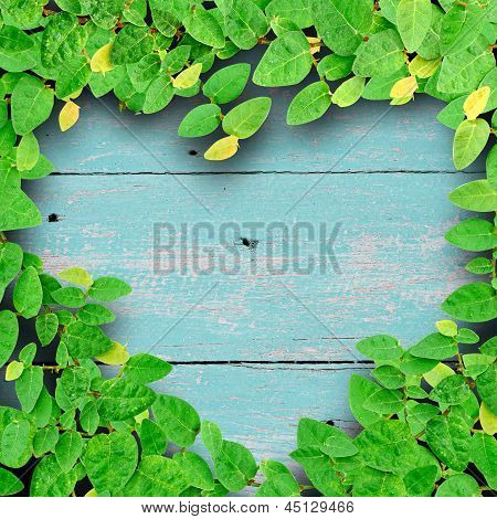 Ivy fixing climbing tree make heart shape on grunge wood background on green color. Love concept. poster