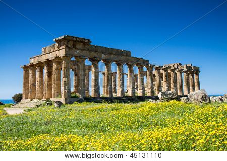 Greek Temple at Selinunte in spring Sicily Italy poster