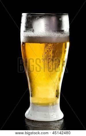 Bright Light Beer
