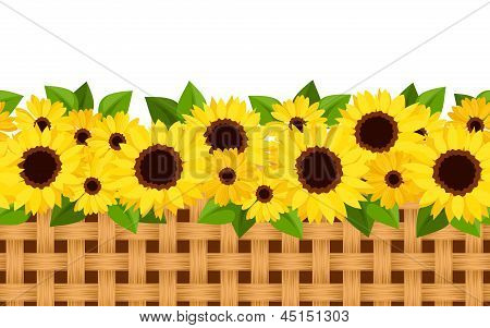 Horizontal seamless background with sunflowers and wicker. Vector illustration.