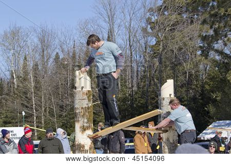 Lumberjack In Chopping Competition
