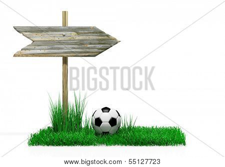 Wooden sign with soccer ball and grass, isolated on white
