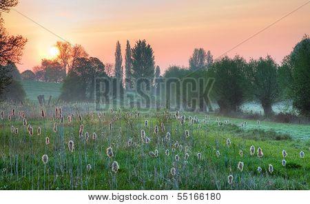 Cotswold Wetlands