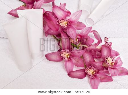 Cream Tube And Orchid