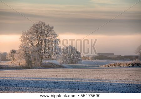 Cotswolds Winters Morning