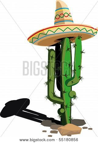 Cactus in the Mexican hat