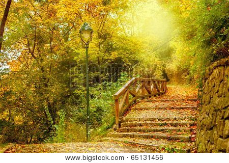 Stone stairs in a park. Autumn in Prague, Czech Republic