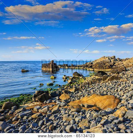 Calm Sea Wave On Rocky Shore