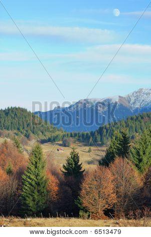 Autumn Pastel