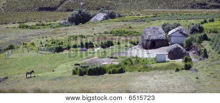 Quechua Farm
