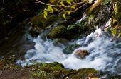Waterfalls in the Croatian Krka National Park poster